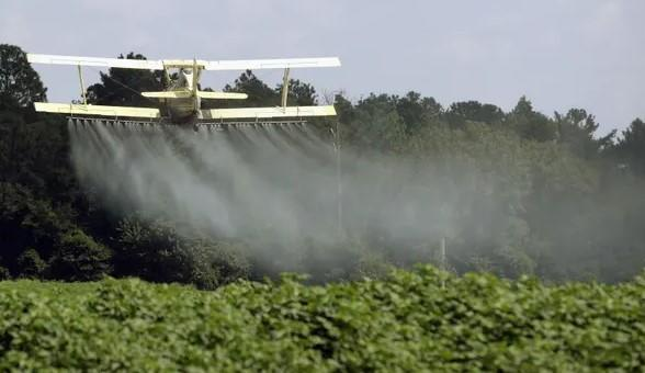 Not-So-Superfood? Pesticide Residue Found In 70% Of US Produce & 92% Of Kale