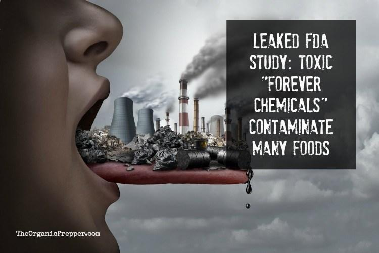 """Leaked FDA Study: Toxic """"Forever Chemicals"""" Contaminate Many Foods"""