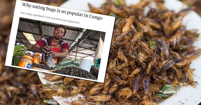 "Globalist Magazine ""The Economist"" Tells Plebs To Eat Bugs"