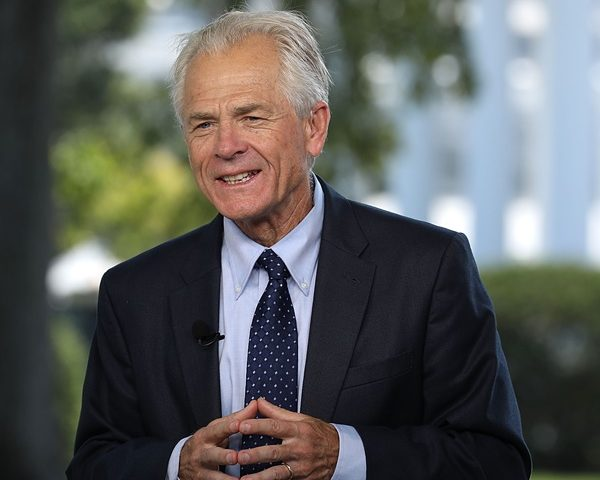 "Peter Navarro: '20 to Be ""One of Greatest Years in US History'"