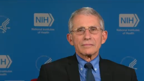 Coronavirus Has Reached 'Community Spread' Within United States: Dr. Anthony Fauci